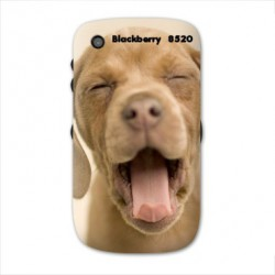 Coque personnalisable BLACKBERRY CURVE 8520